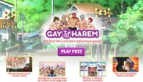 Download free gay game without credit card Gay Harem